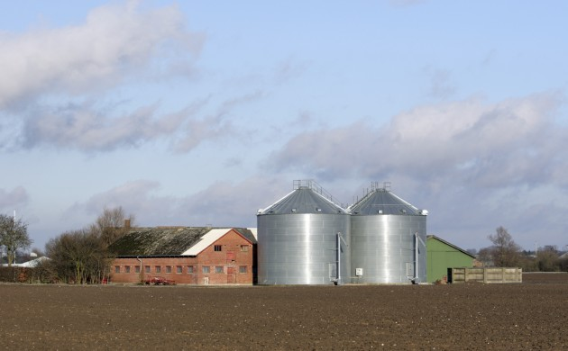 One in seven farms are deemed to be a high bankruptcy risk (photo: iStock)