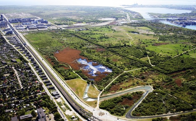 The new nature park will cover 3,500 hectares in Amager (photo: Naturstyrelsen.dk)