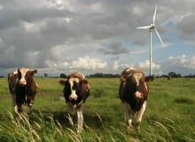 Old wind turbines will be replaced by new and larger ones (photo: Dirk Ingo Franke)