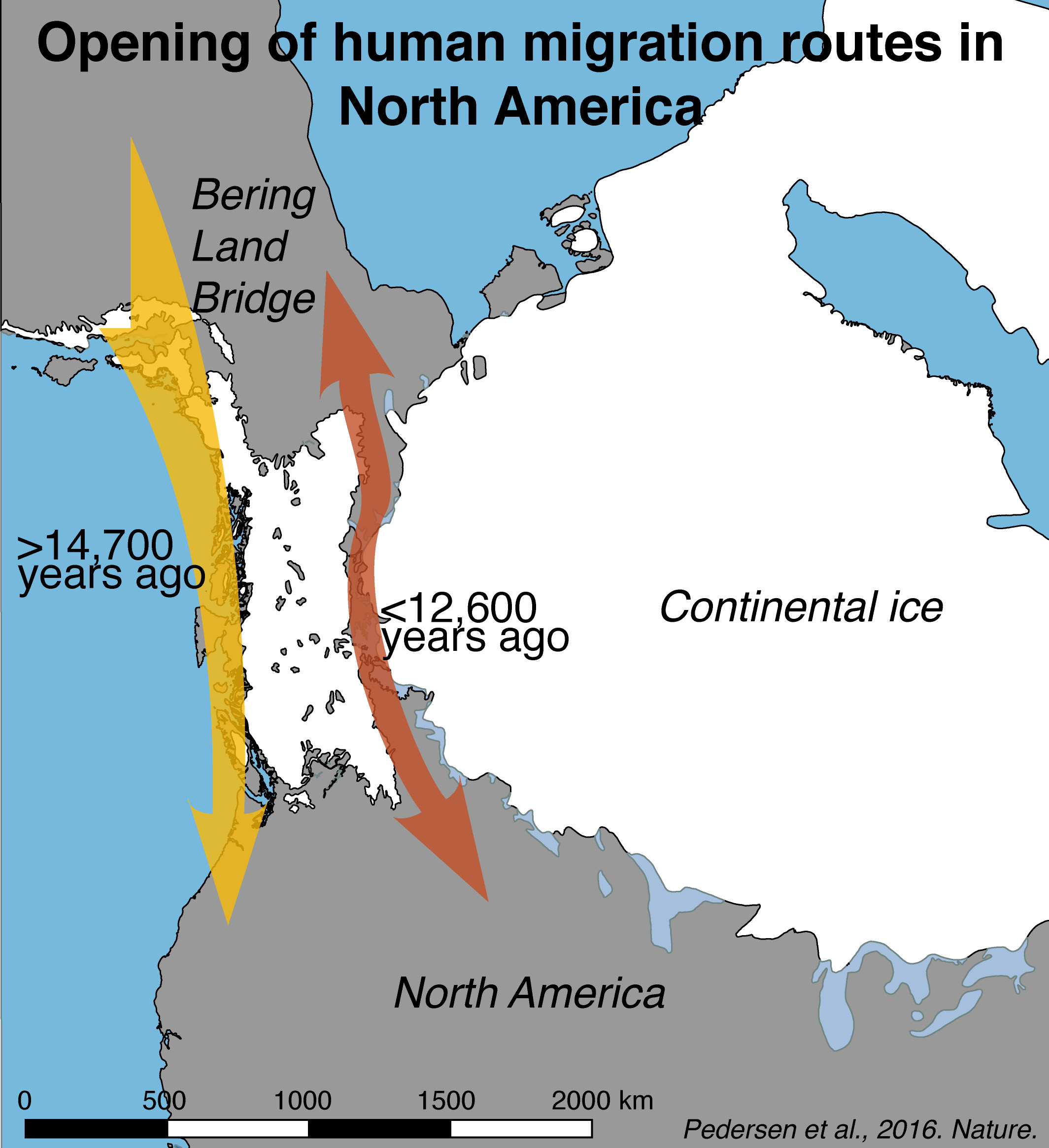 Ice Age North America Map on younger dryas, prehistoric map of north america, late glacial maximum, ancient seas of north america, pleistocene ice age north america, glacial map of north america, snowball earth, little ice age, bering land bridge, cordilleran ice sheet, retreat of glaciers since 1850, glaciers covering north america, milankovitch cycles, laurentide ice sheet, ice coverage of north america, glaciers that swept over north america, ice age north america climate, post-glacial rebound, sea level rise map north america, quaternary glaciation, land bridge from asia to north america, ancient sea level map america, land bridge migration to north america, ice age glaciers north america, upper paleolithic, glacial period, last glacial period, glacier coverage north america, little ice age north america, ice sheet, migration route from europe to america, glaciers in north america, wisconsin glaciation, early migration to north america, ice age animals north america, ice age deer north america, medieval warm period,