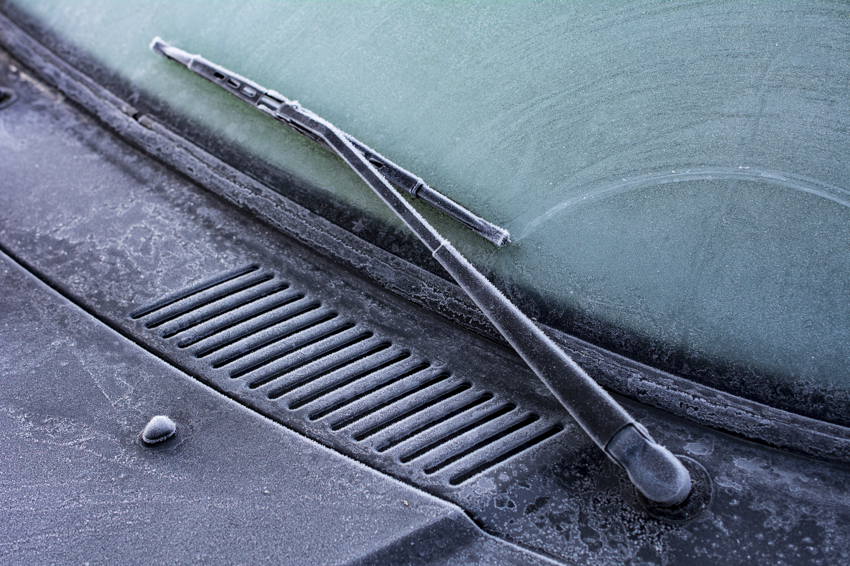 Frost may affect people in central regions of Jutland this week (photo: iStock)
