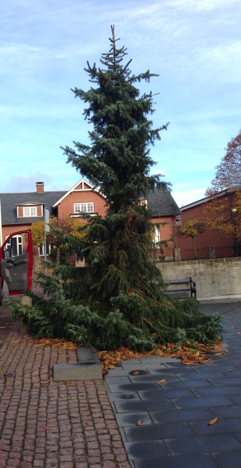 Ugly Christmas Tree.Danish News In Brief Ugly Tree Getting Aars In Gear For